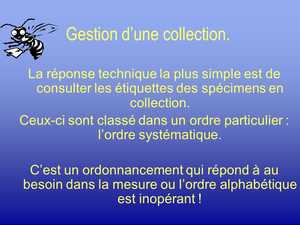 Gestion d'une collection.