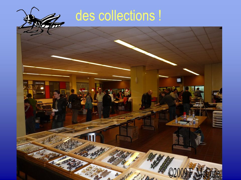 des collections !