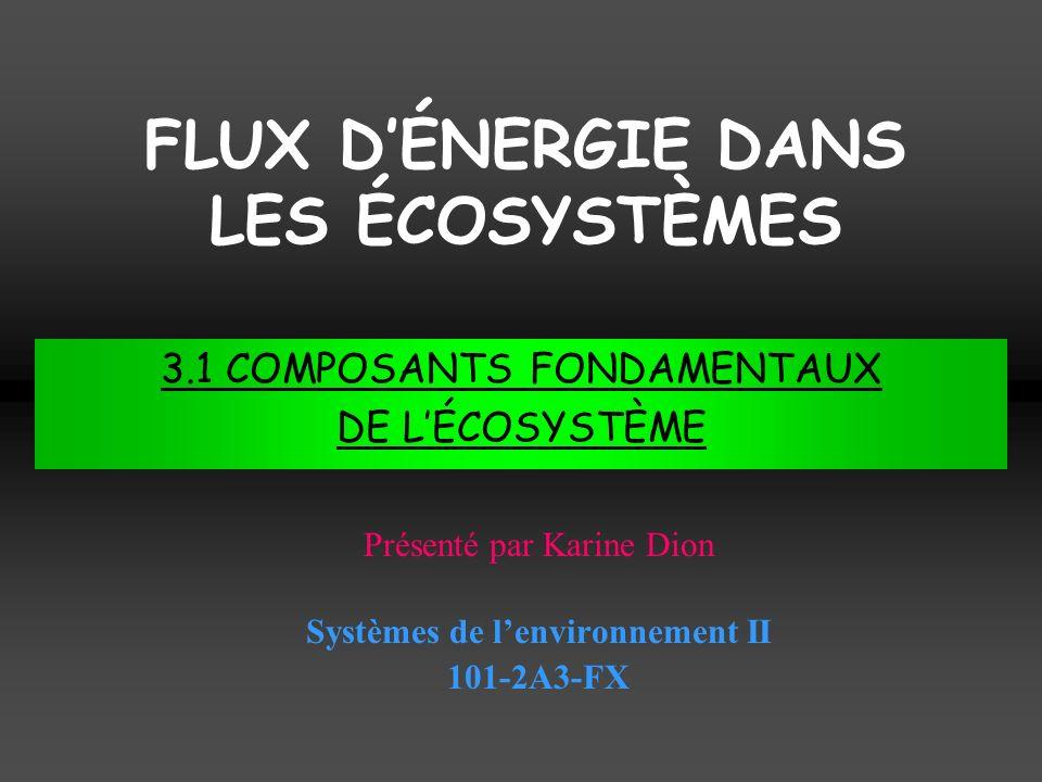 FLUX D'ÉNERGIE DANS LES ÉCOSYSTÈMES