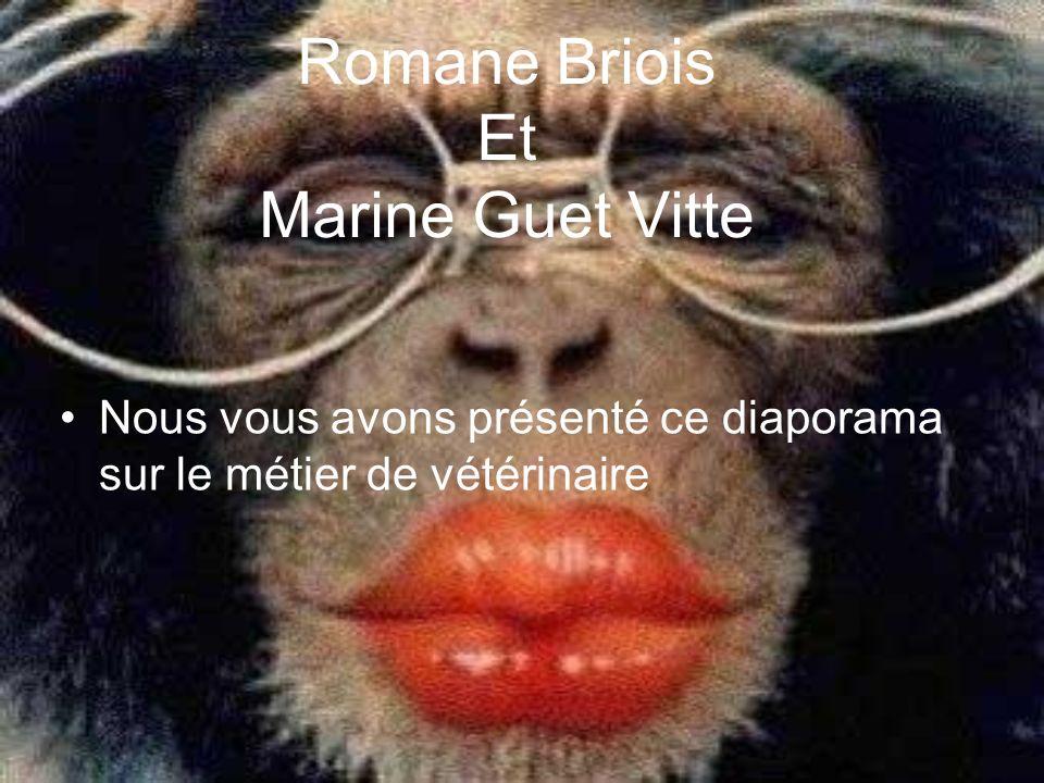 Romane Briois Et Marine Guet Vitte