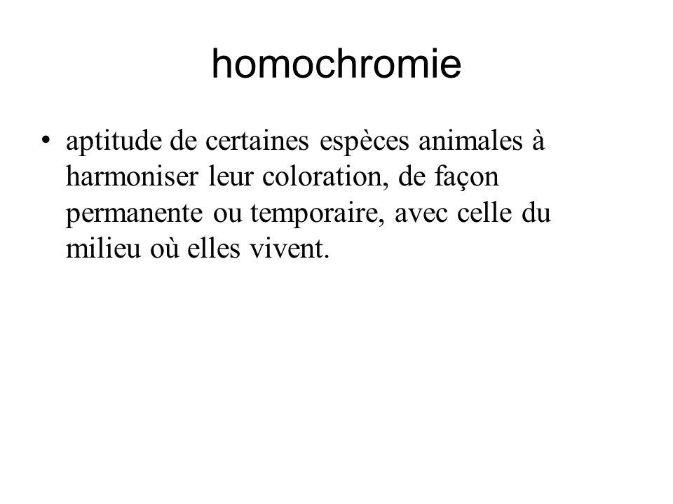 homochromie