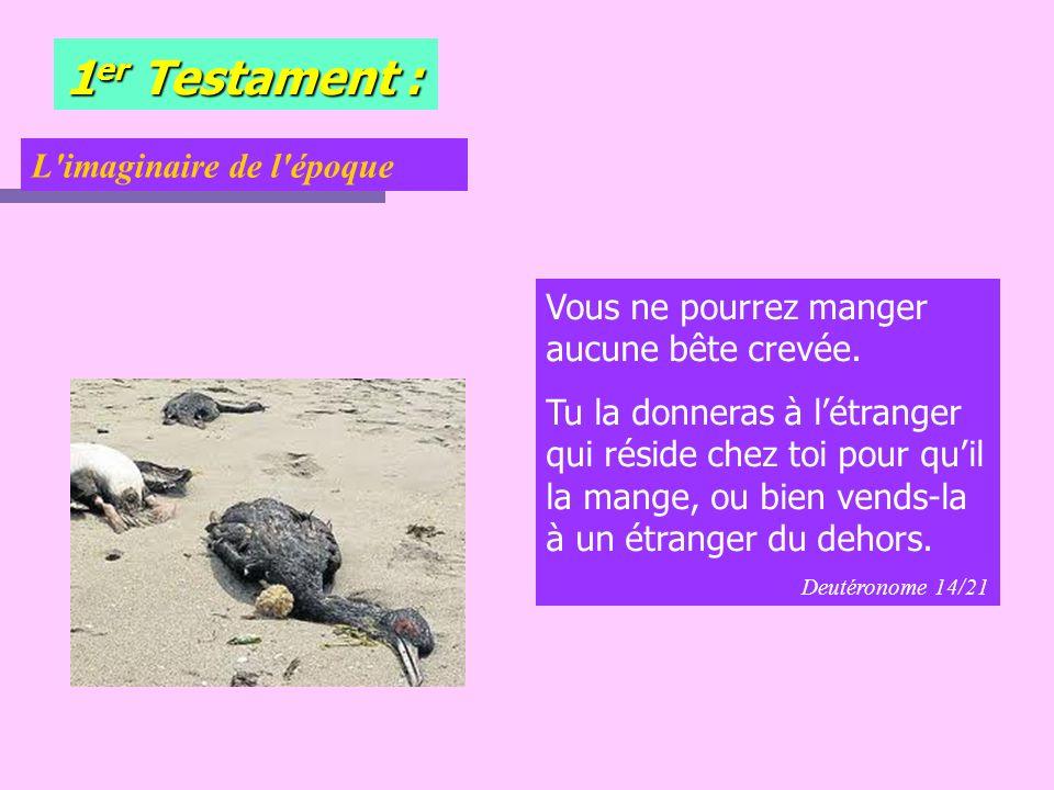 1er Testament : L imaginaire de l époque