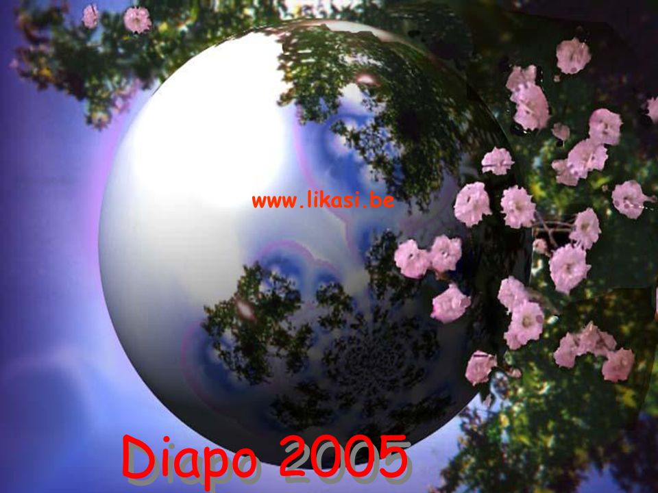 www.likasi.be Diapo 2005 Laurence.L Diapo 2005 Laurence.L