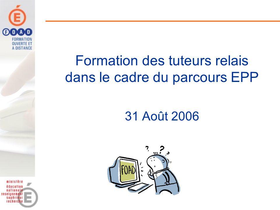 Formation des tuteurs relais dans le cadre du parcours EPP