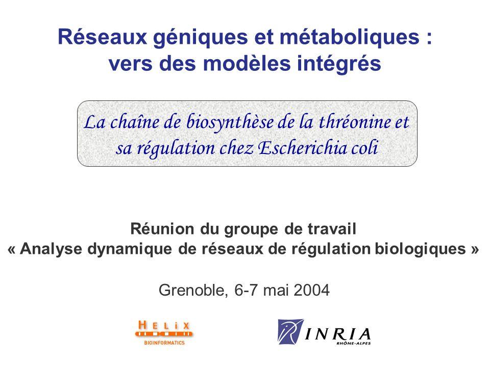 Réseaux géniques et métaboliques : vers des modèles intégrés