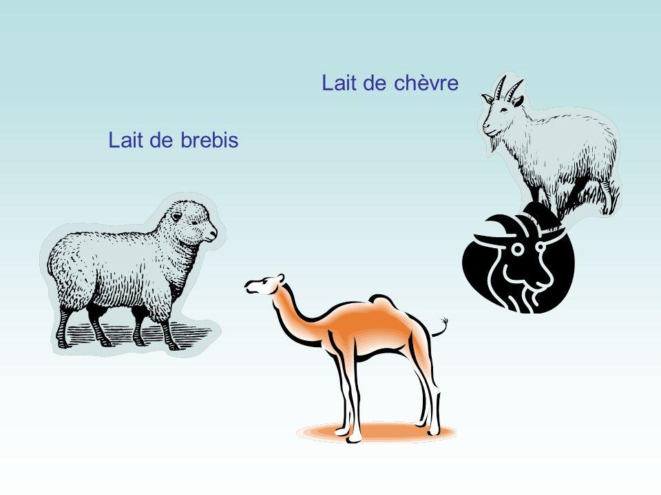 Lait de chèvre Lait de brebis