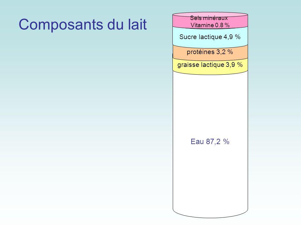 Composants du lait Eau 87,2 % Sucre lactique 4,9 % protéines 3,2 %