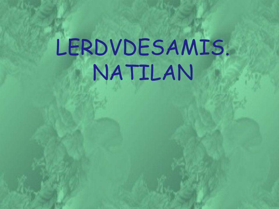 LERDVDESAMIS.NATILAN