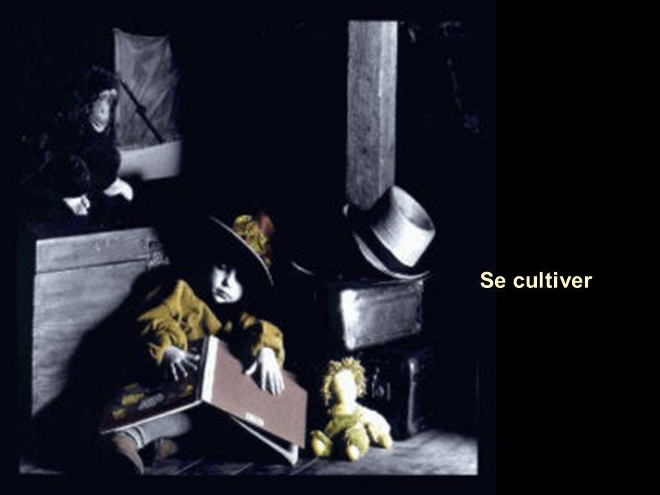 Se cultiver