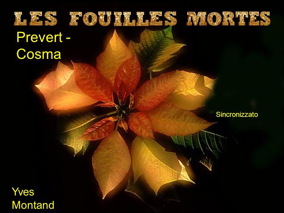 Prevert - Cosma Sincronizzato Yves Montand