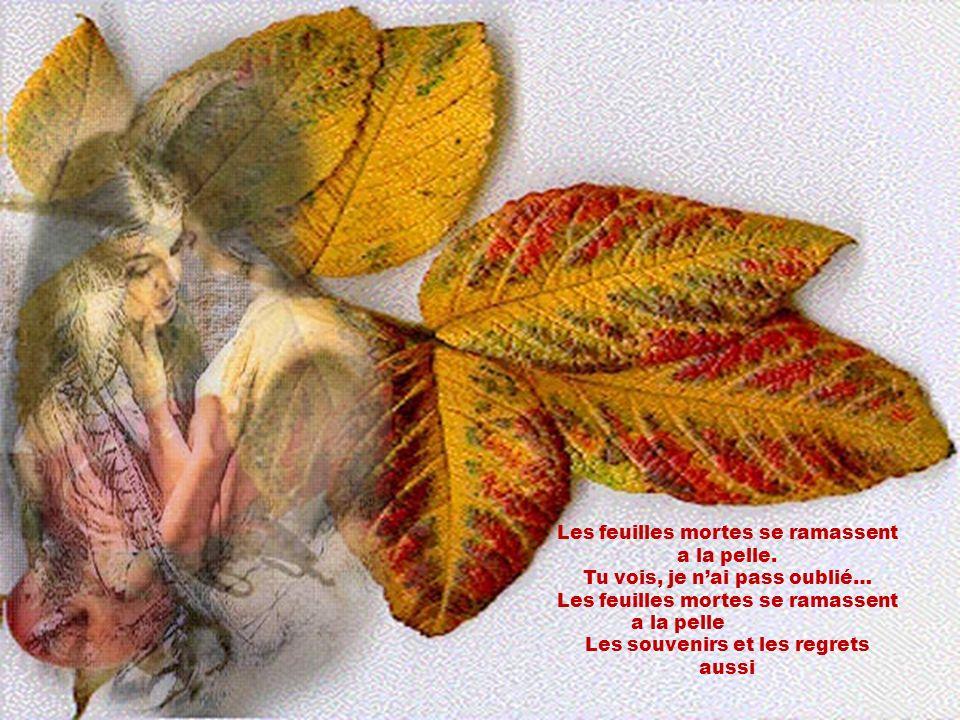 Les feuilles mortes se ramassent a la pelle