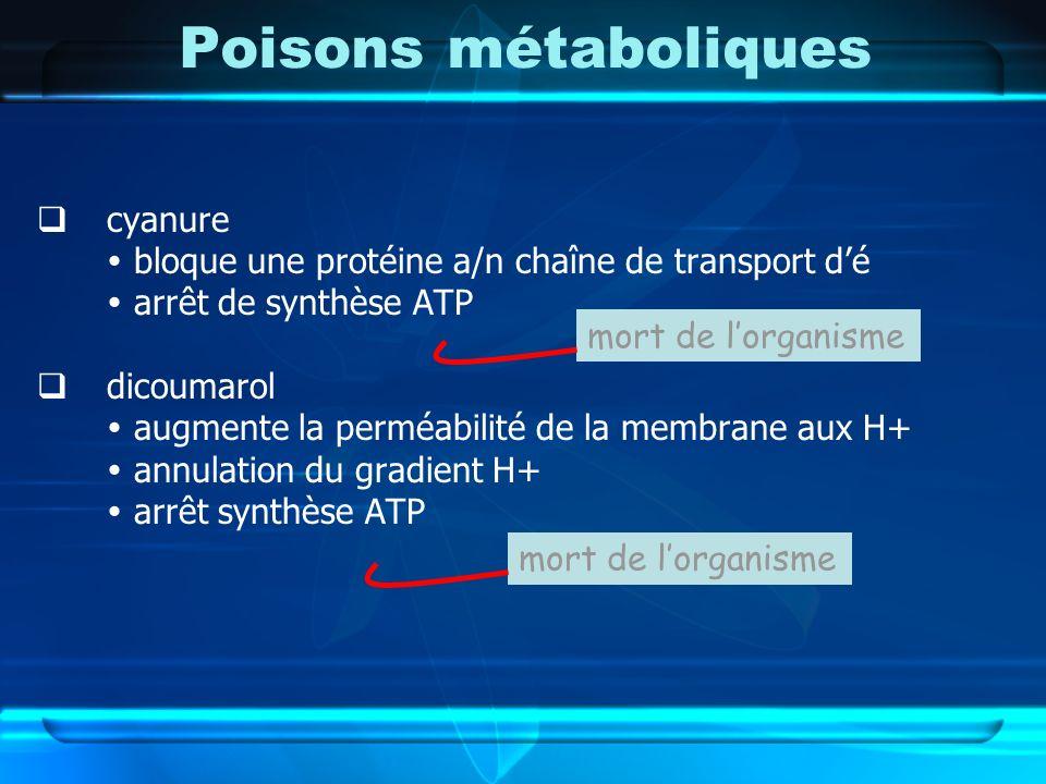 Poisons métaboliques cyanure