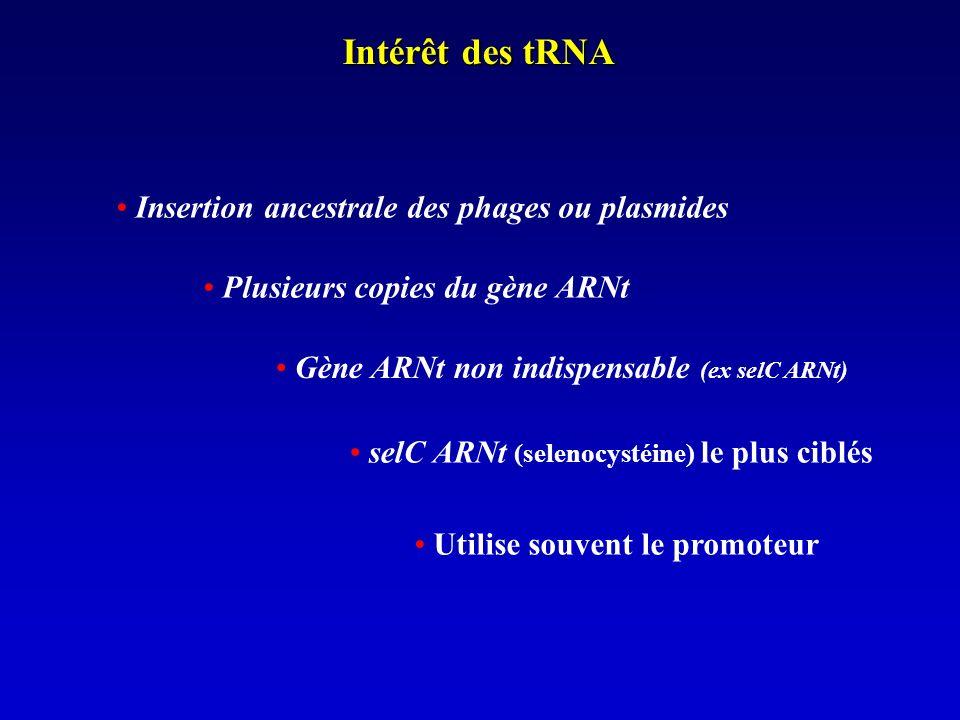 Intérêt des tRNA Insertion ancestrale des phages ou plasmides