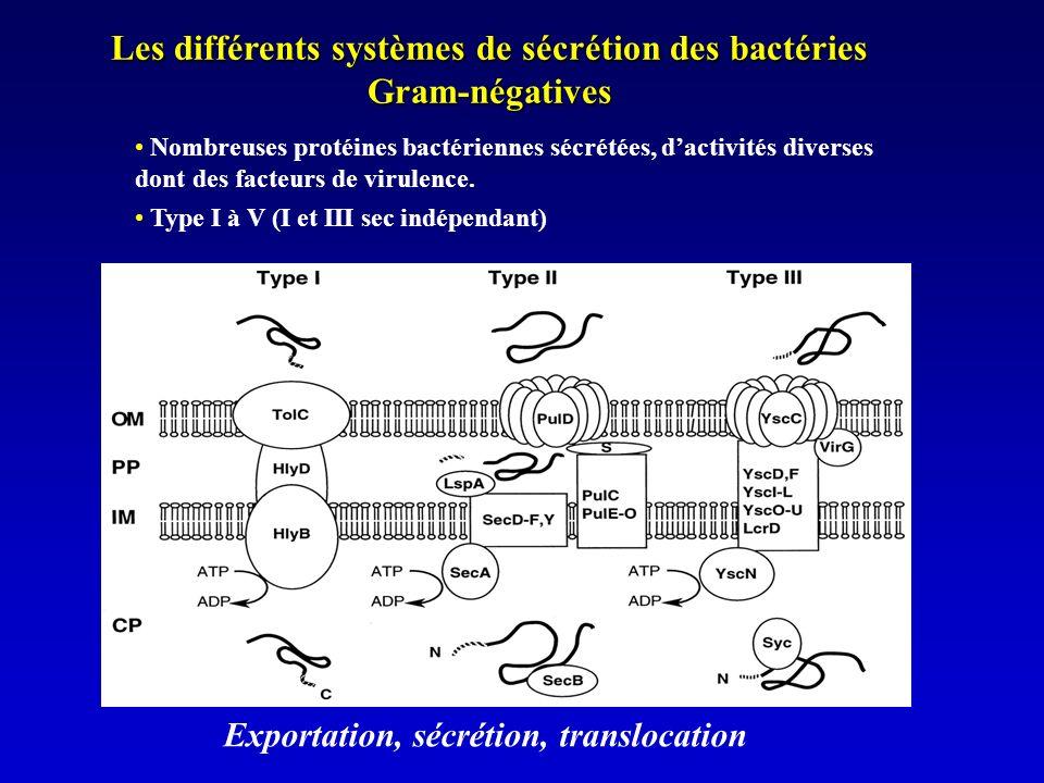 Les différents systèmes de sécrétion des bactéries