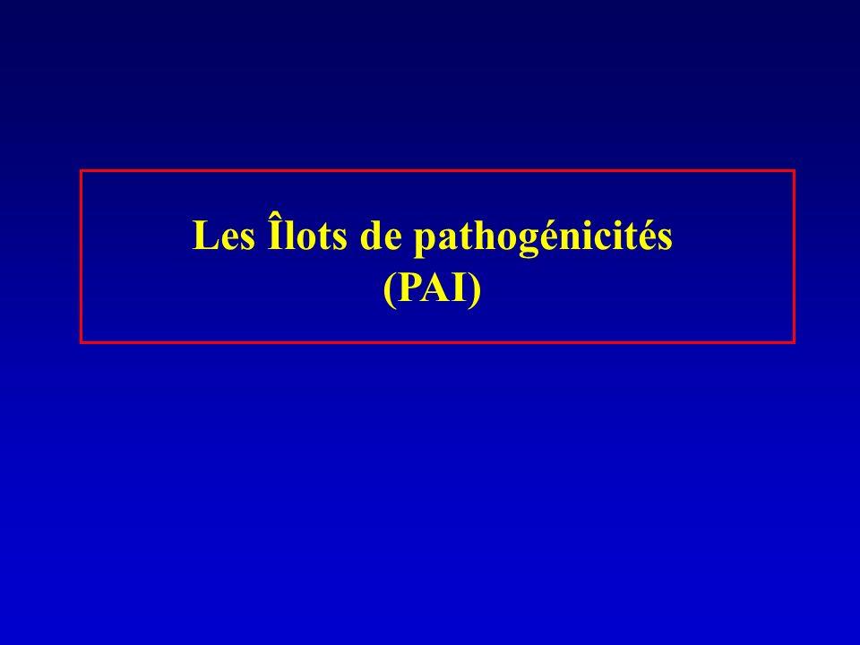 Les Îlots de pathogénicités