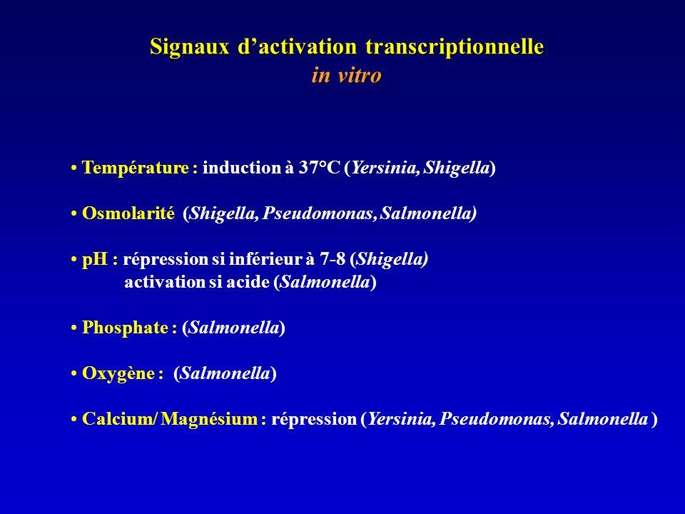 Signaux d'activation transcriptionnelle