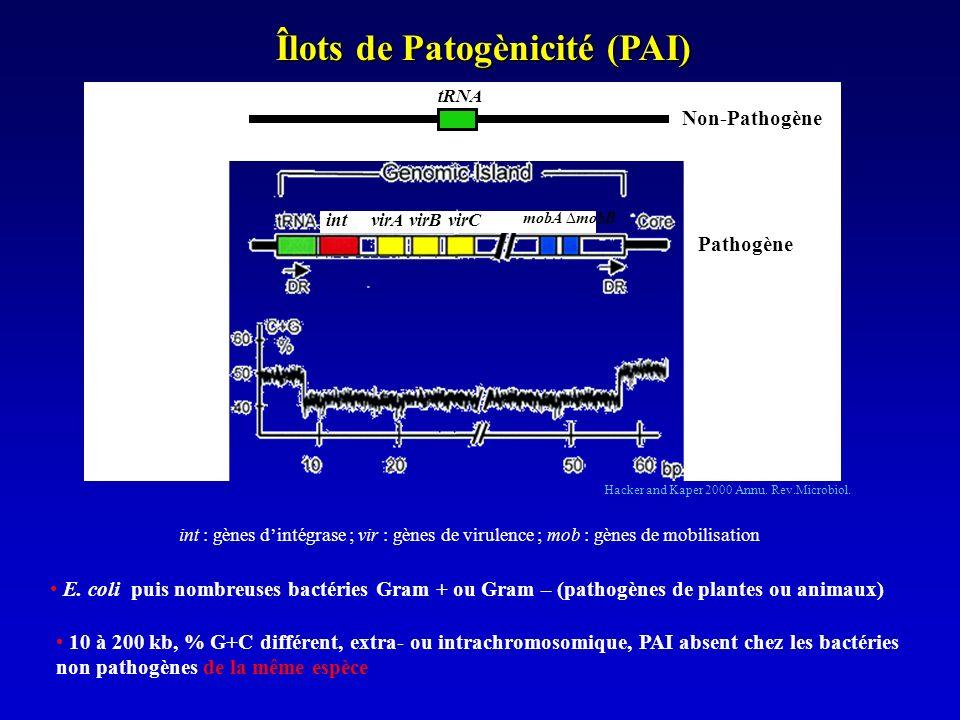 Îlots de Patogènicité (PAI)