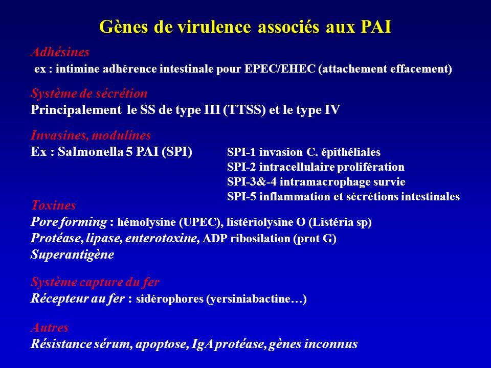 Gènes de virulence associés aux PAI
