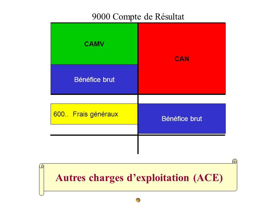 Autres charges d'exploitation (ACE)