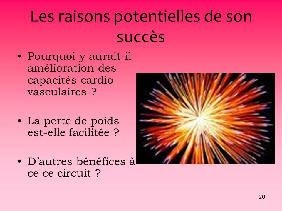 Les raisons potentielles de son succès
