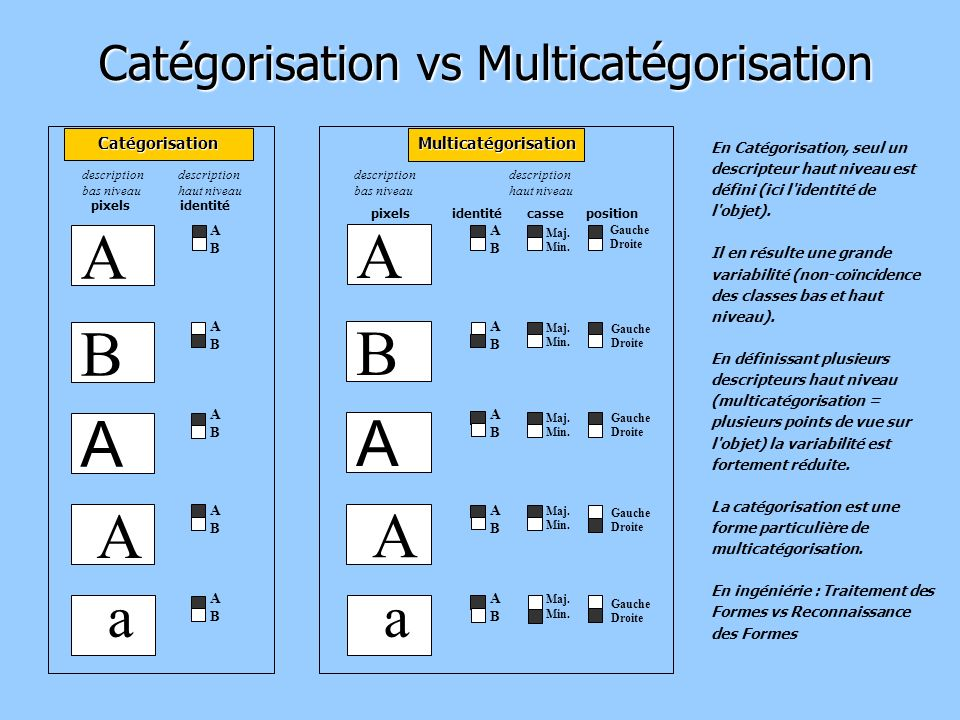 Catégorisation vs Multicatégorisation