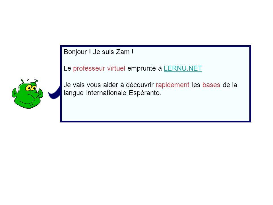 Bonjour ! Je suis Zam ! Le professeur virtuel emprunté à LERNU.NET.