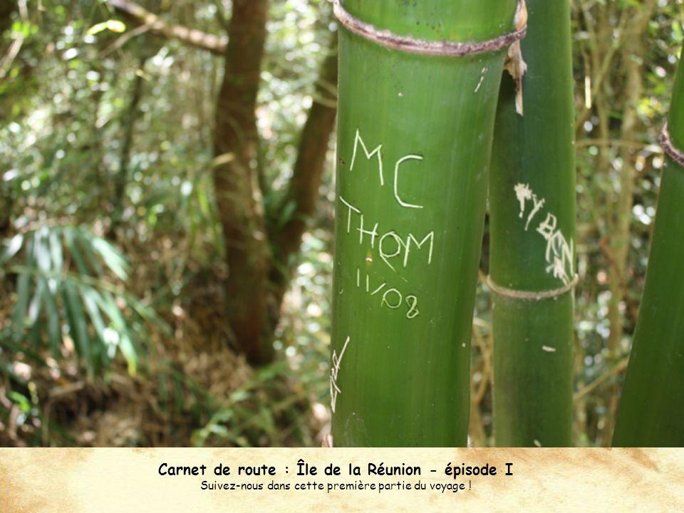 Carnet de route : Île de la Réunion - épisode I