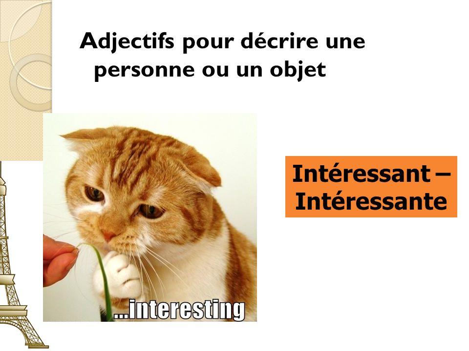 Adjectifs pour décrire une personne ou un objet