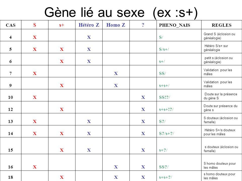 Gène lié au sexe (ex :s+)
