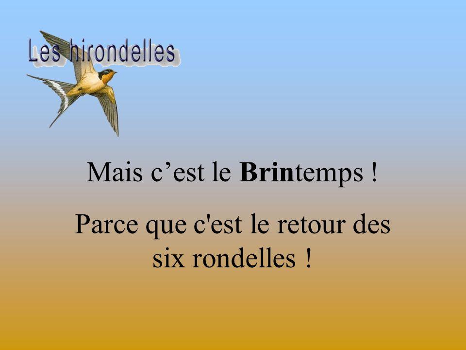 Mais c'est le Brintemps !