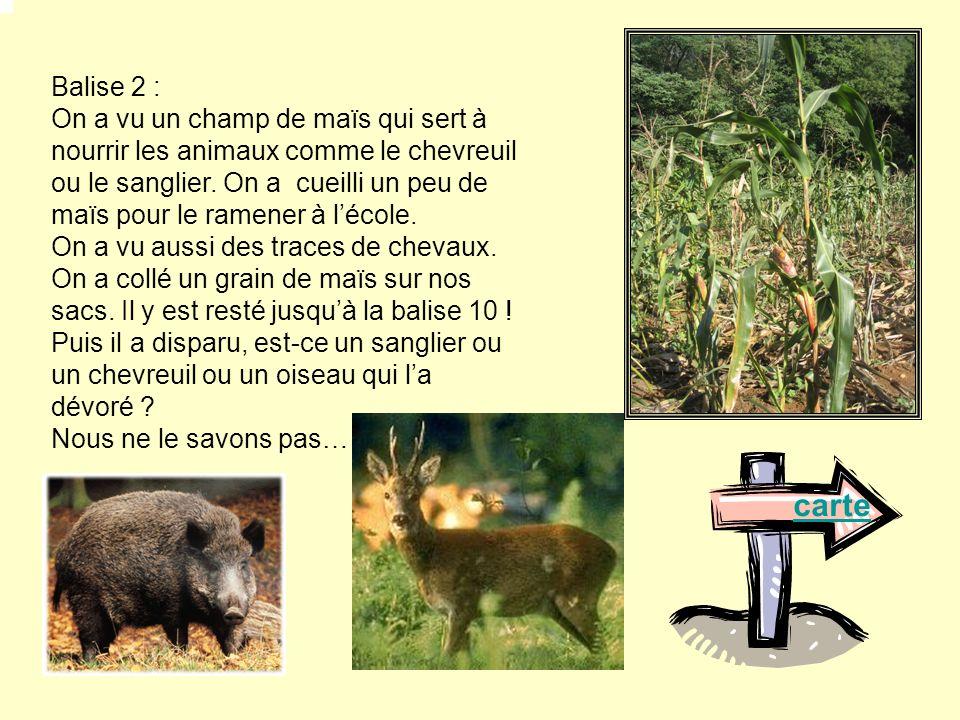Balise 2 :