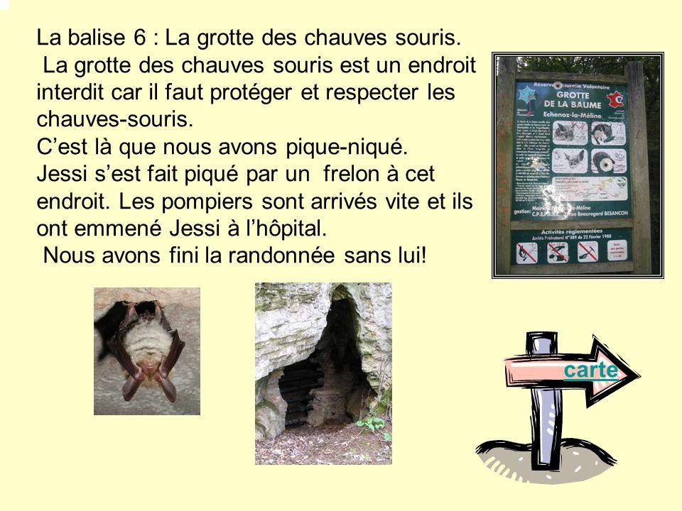 La balise 6 : La grotte des chauves souris.