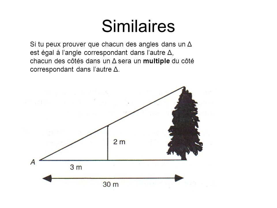 Similaires