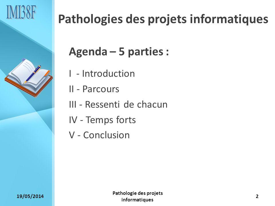 Pathologie des projets informatiques