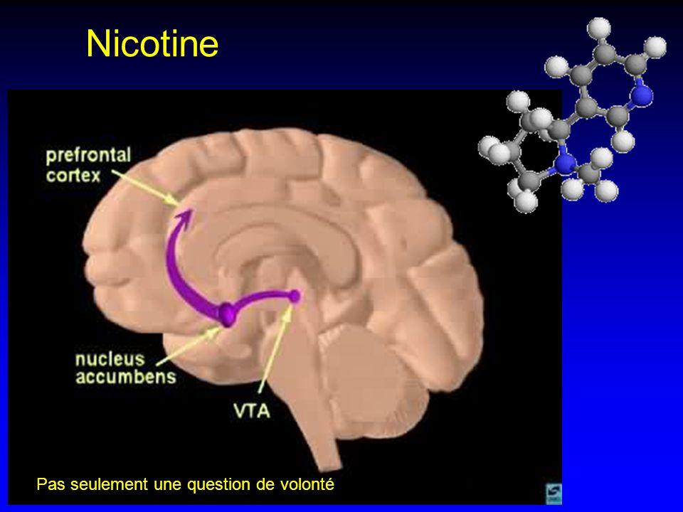 Nicotine Pas seulement une question de volonté