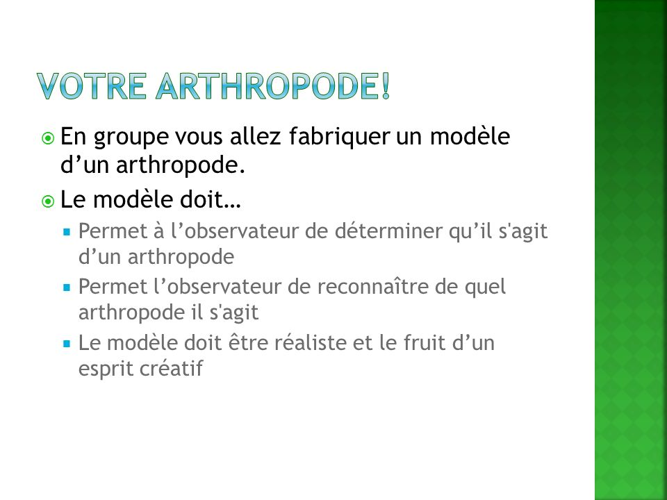 Votre Arthropode! En groupe vous allez fabriquer un modèle d'un arthropode. Le modèle doit…