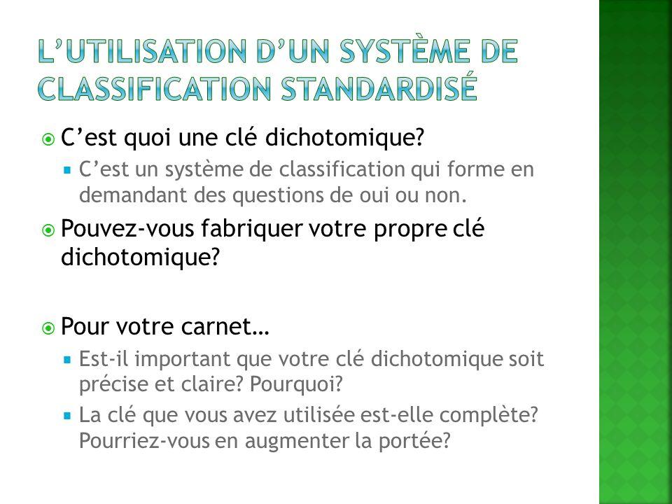 L'utilisation d'un système de classification Standardisé