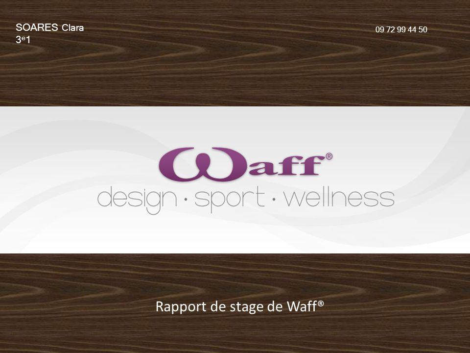 Rapport de stage de Waff®