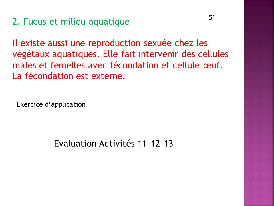 2. Fucus et milieu aquatique