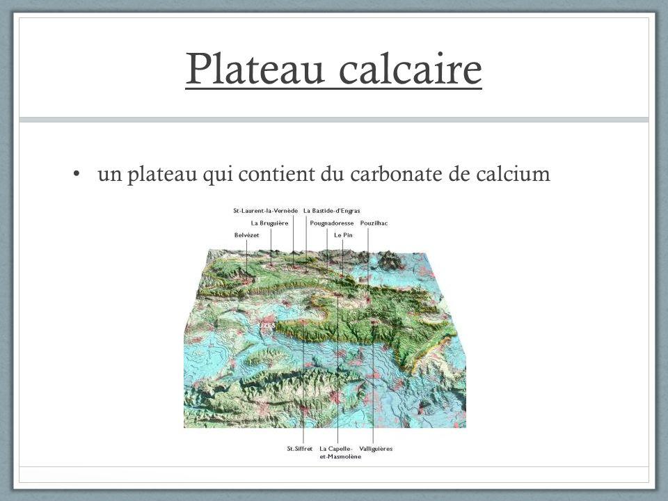 Plateau calcaire un plateau qui contient du carbonate de calcium