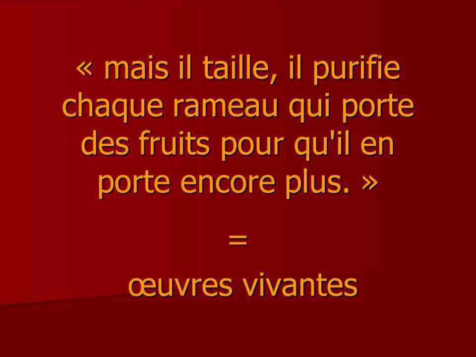 « mais il taille, il purifie chaque rameau qui porte des fruits pour qu il en porte encore plus. »