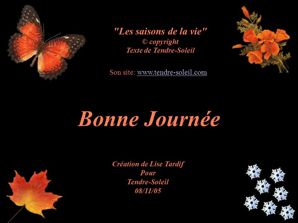Texte de Tendre-Soleil Création de Lise Tardif