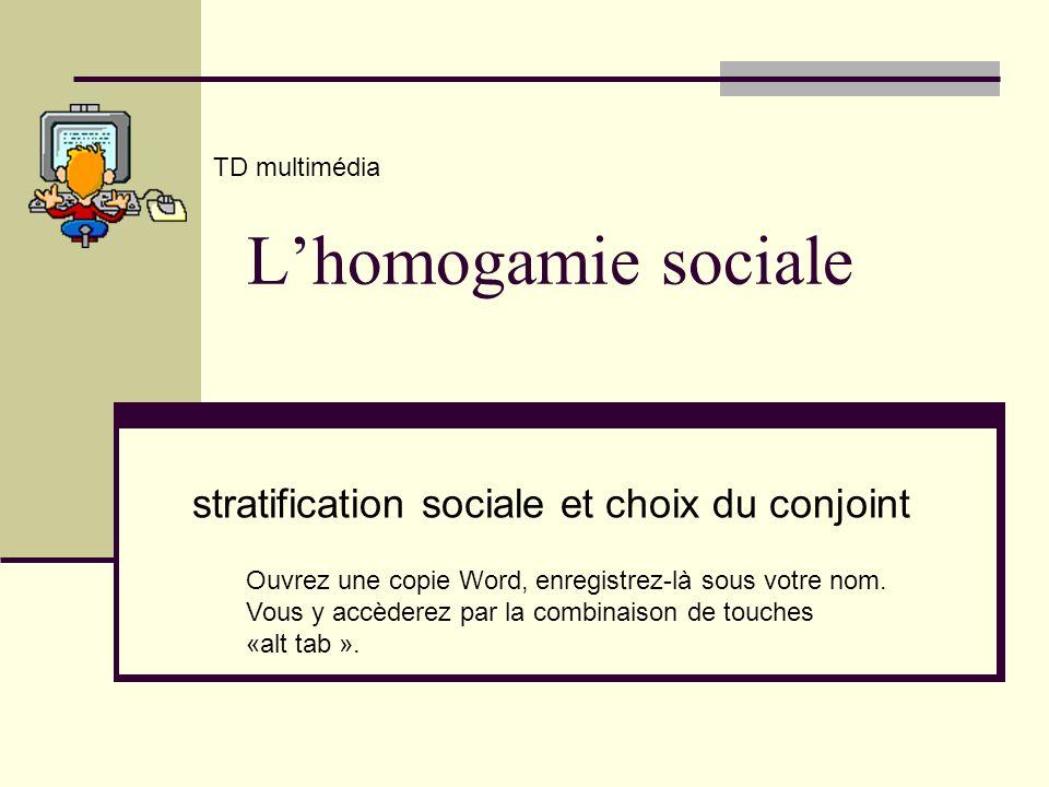 stratification sociale et choix du conjoint