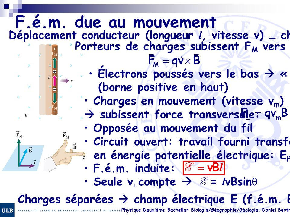 F.é.m. due au mouvement Déplacement conducteur (longueur l, vitesse v) ^ champ B. Porteurs de charges subissent FM vers le haut.