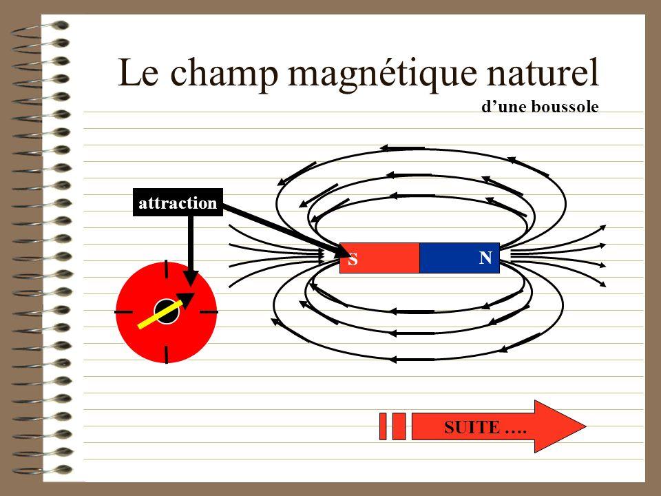Le champ magnétique naturel