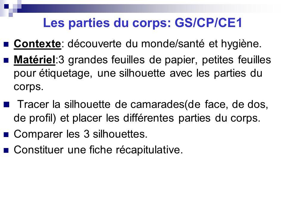 Les parties du corps: GS/CP/CE1