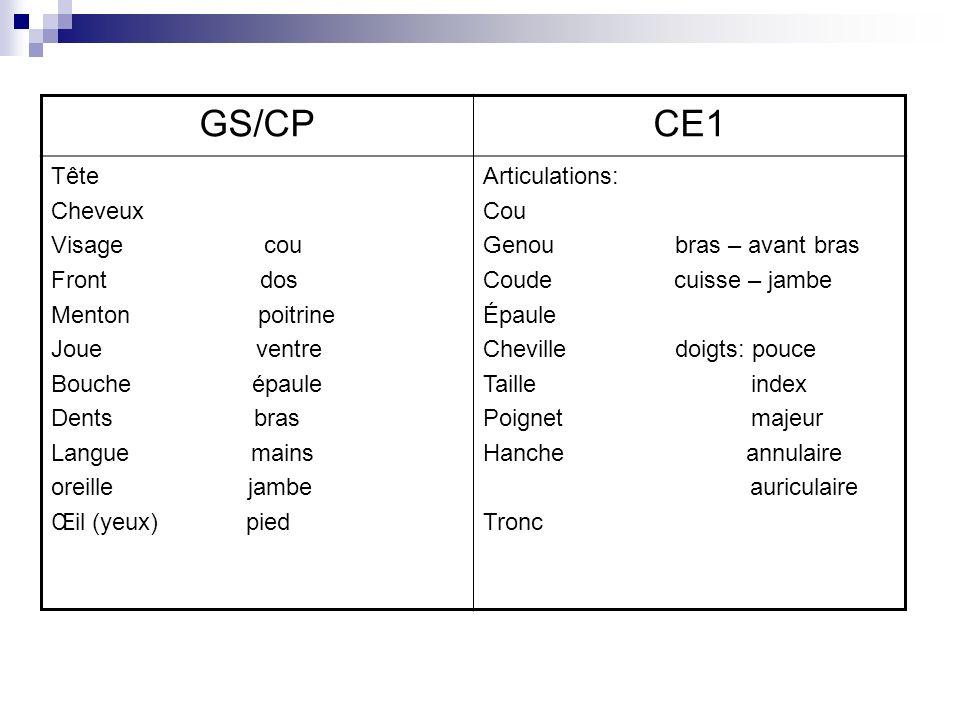 GS/CP CE1 Tête Cheveux Visage cou Front dos Menton poitrine