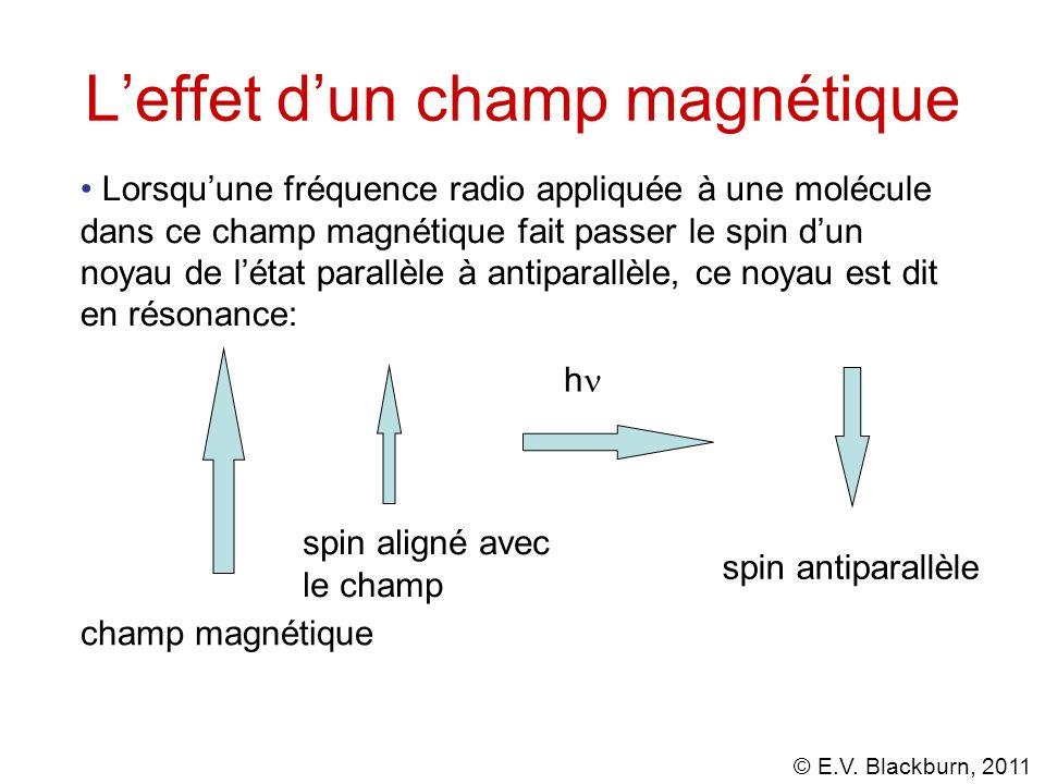 L'effet d'un champ magnétique