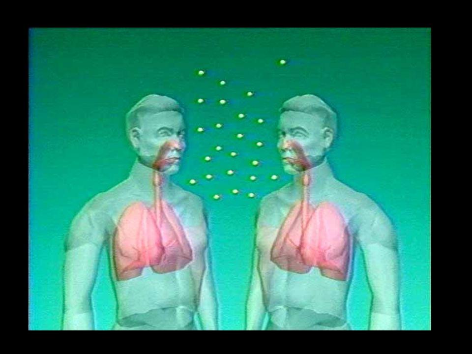 Mycobacerium tuberculosis se propage à travers l'air d'une personne à une autre lorsqu'on tousse, éternue et même quand on chante ou on parle.