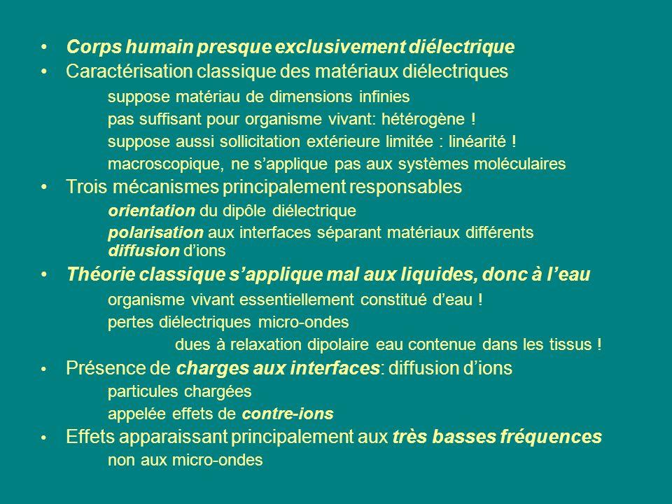 Corps humain presque exclusivement diélectrique